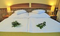 Hotel Park Gyula*** akciós online szobafoglalással Gyulán